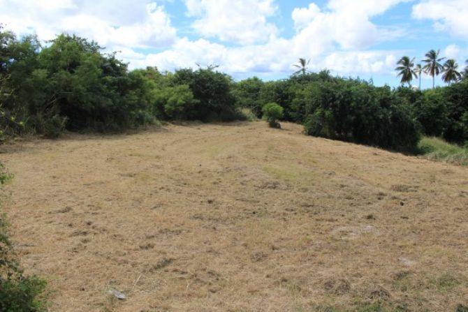 Oldbury Plantation E